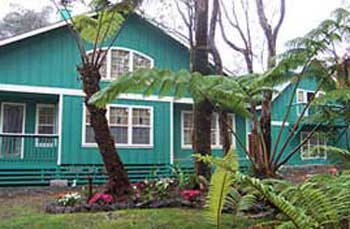 bamboo orchid cottage bed breakfast big island hawaii rh waimea com Dendrobium Orchids Orchid Design